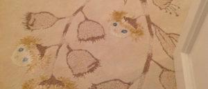 Carpet Layers